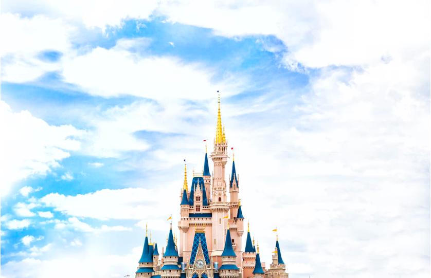 Disney World Magic Castle